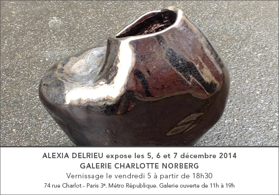 Exposition galerie Charlotte Norberg, 2014